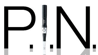 Pinit_2018-1.png