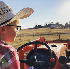 t tractor.jpg