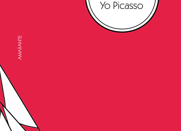 Jacques Perry, Yo Picasso (biographie)