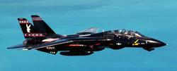 Grumman F-14 Tomcat_5