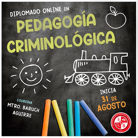 Diplomado   Pedagogía Criminológica