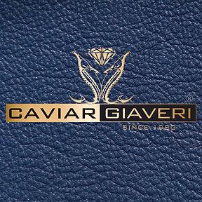 giaveri_logo_fondoblu.jpg
