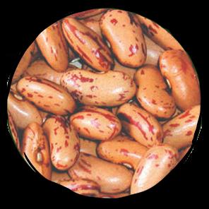 Borlotti Saluggia Dry Beans - 500gr
