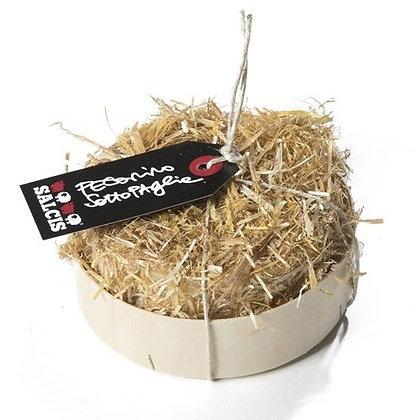 Pecorino Toscano seasoned and wrapped in straw Salcis - 500gr