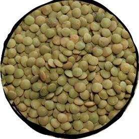 Lentils Small Dry - 500gr