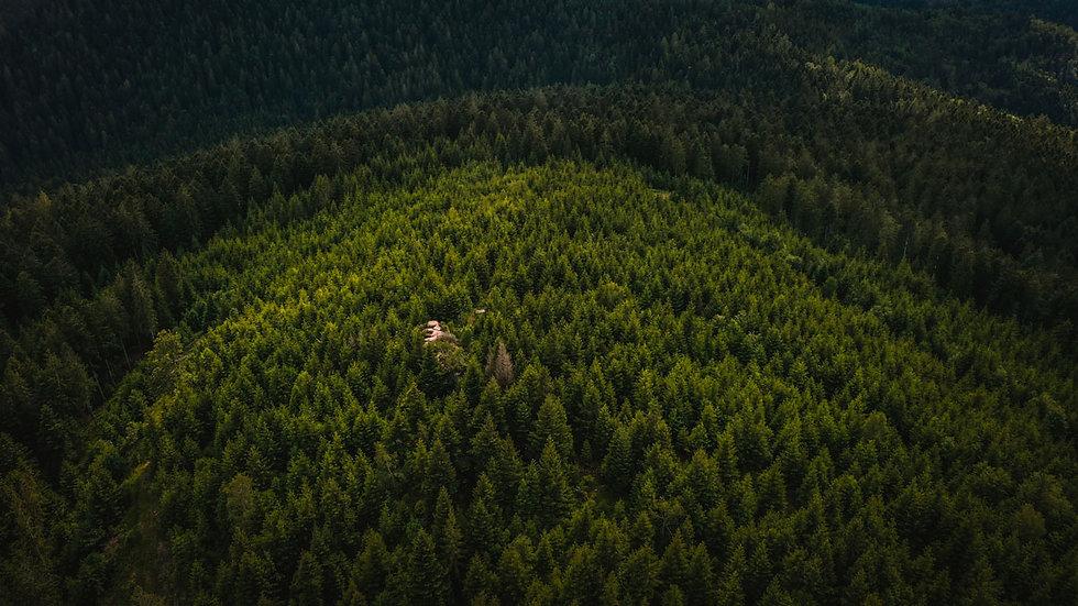 Wildwestwegs-Klagstein