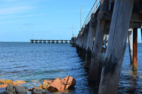 Pt Vic Jetty Close.jpg