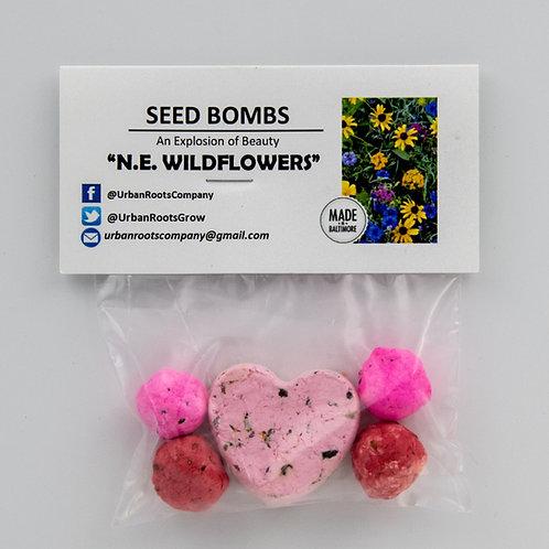 Northeastern Wildflower Seed Bombs - packet