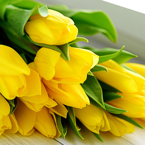 bouquet-yellow-tulip-flowers.jpg