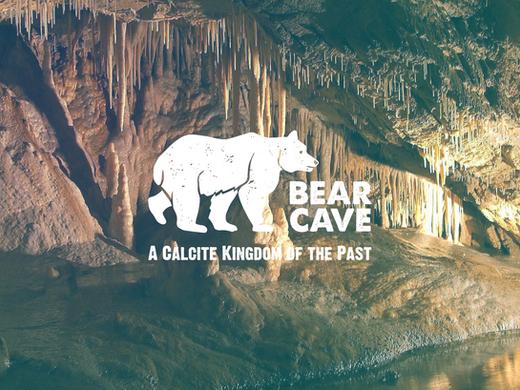 Bear Cave VR Documentary