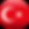 Certified Turkish translation