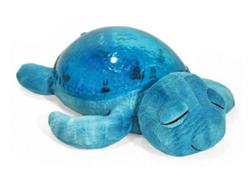 Tranquil Turtle | Aqua
