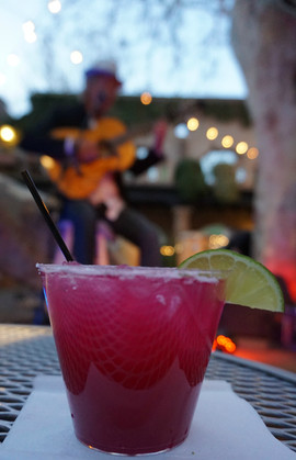 Prickly Pear Marg in the Courtyard