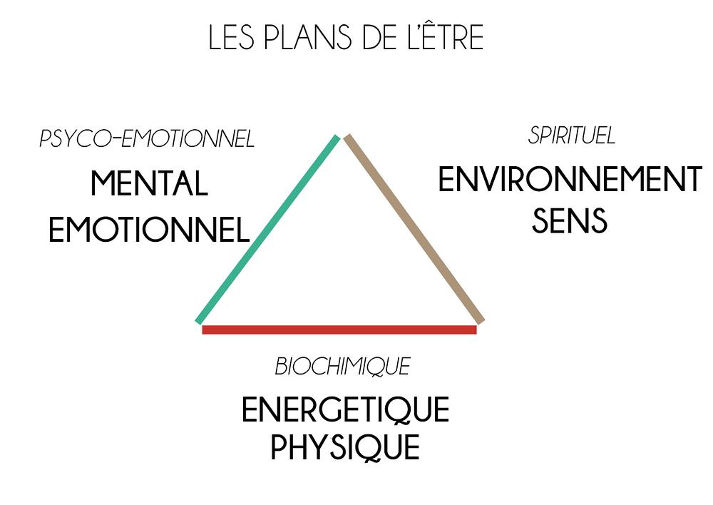 Les plans de l'être naturopathie holistique