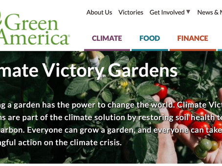 HPB leads the way with Climate Victory Gardens