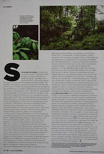 M le magazine du Monde|13.06.2014 le jardin jungle karlostachys