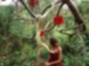 Shooting photo au jardin exotique le jardin jungle