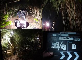 Tournage nocturne au jardin jungle