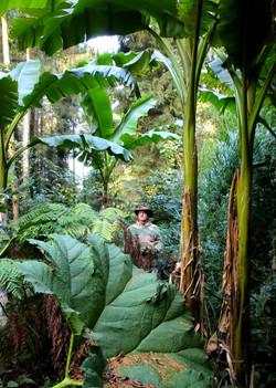 jungle shooting photo