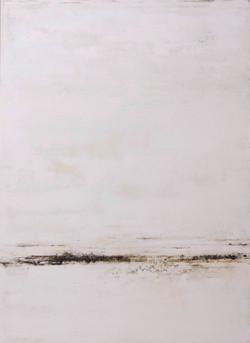 2013    110 x 180 cm