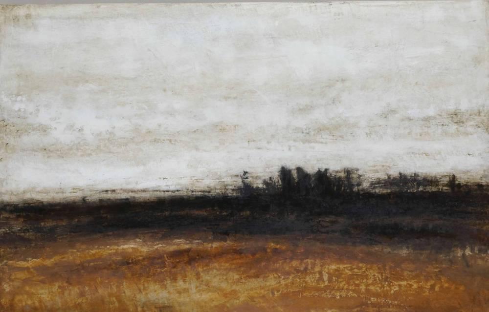 2011    64 x 100 cm