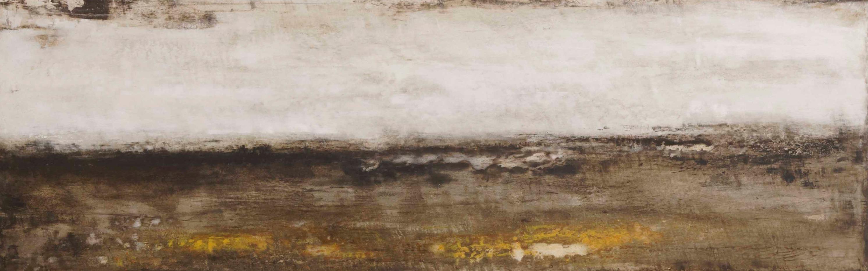 2013    30 x 100 cm