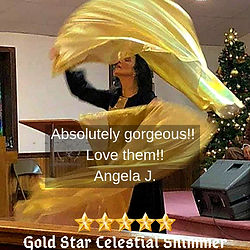 Gold Star Review.jpg