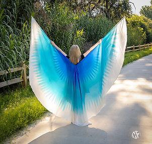 Angel Wings Full Spread Back.jpg