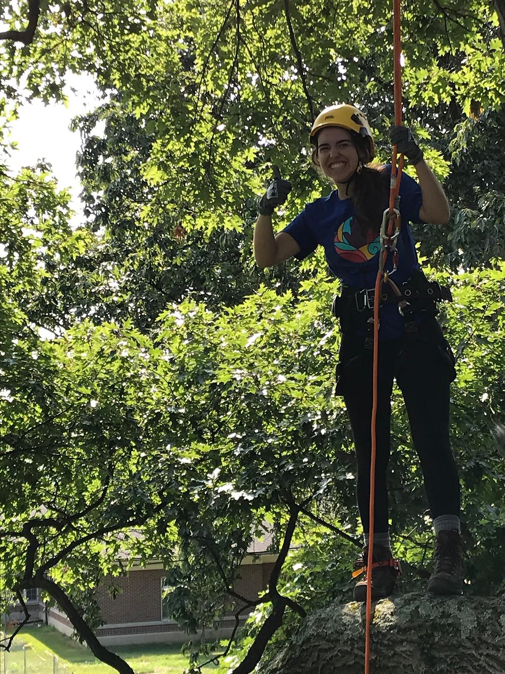 Jenny standing on tree limb in climbing gear