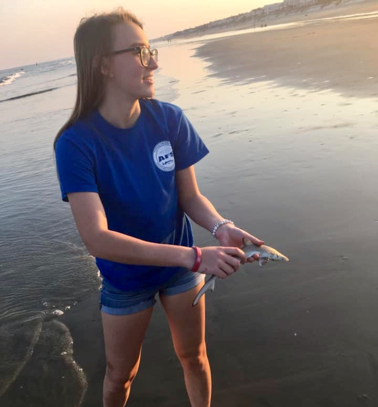 Taylor returning a juvenile shark back into the ocean