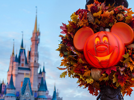 Introducing theUltimate Disney Fall into Magic Package!