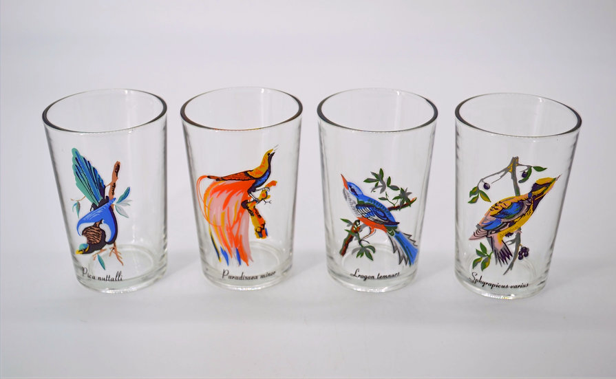 Set Of 4 Exotic Bird Glasses