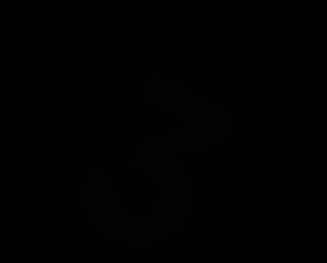 3 web černá.png