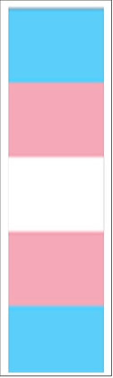 Trans Bookmark Front
