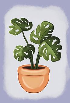 Houseplant-1.jpg
