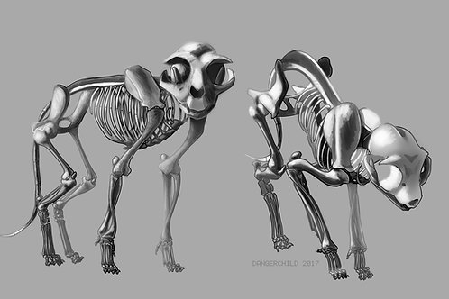 Cat Skeletons (Wallpaper/ Computer)