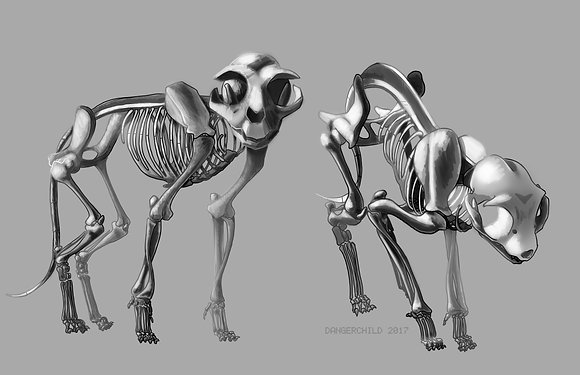 Cat Skeletons (A3)