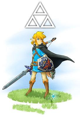 Legend of Zelda, Link (Breath of the Wild) (A3)