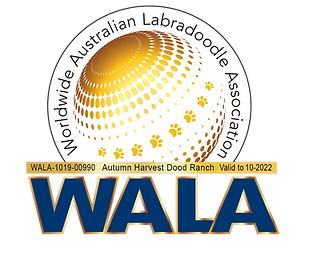 Autumn Harvest WALA 2022 Logo.png