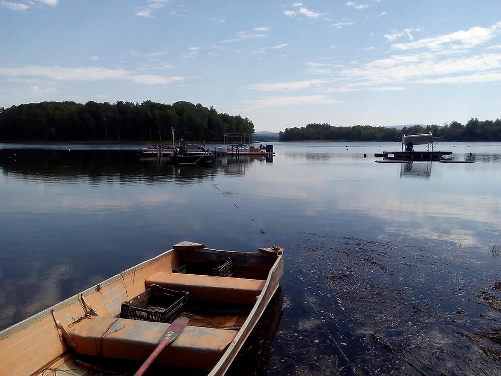 Lakeside photo by Vweta