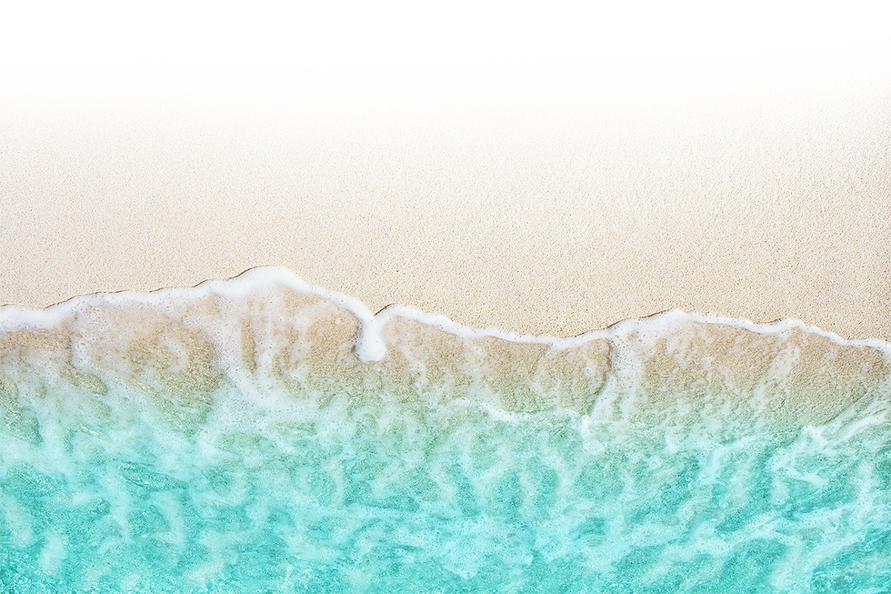 beach_shore2.png