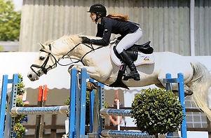 Source-a-Horse success 05