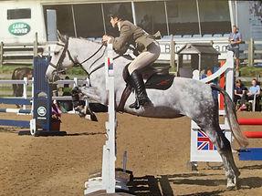 Source-a-Horse success 03