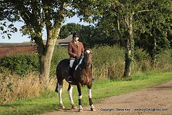 Source-a-Horse success 06