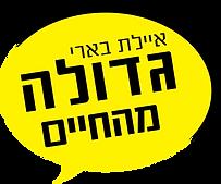 לוגו ללא תמונה.png