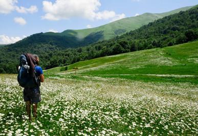 Trek à Dilijan