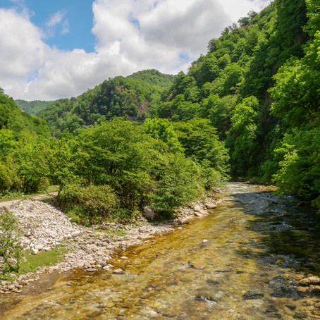 Koutaïssi et sa région, escale au cœur de la Géorgie.