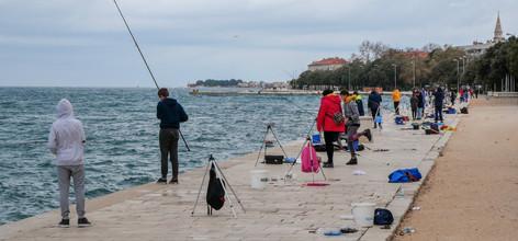 P1004109 - Zadar 5.jpg