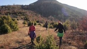 Le Nord de l'Albanie : De Tirana aux Montagnes d'Elbasan