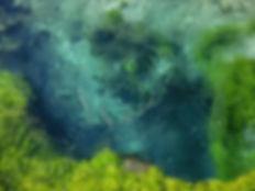 P1005525 - Blue Eye 5.jpg